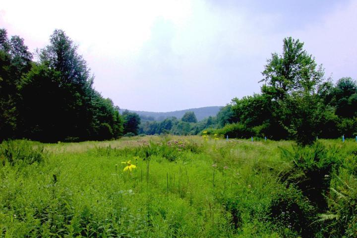The Registry of Nature Habitats